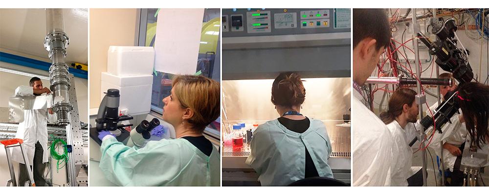 Research Team 2 - Que Investigamos - NeutronsForMedicine