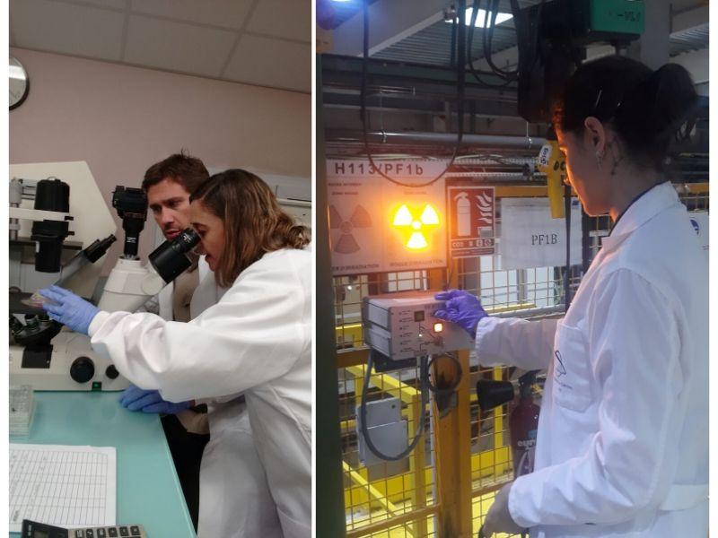 Grupo de investigación - Proyecto I+D - NEUTRONES PARA MEDICINA